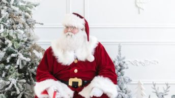 Santa And Elf Costumes